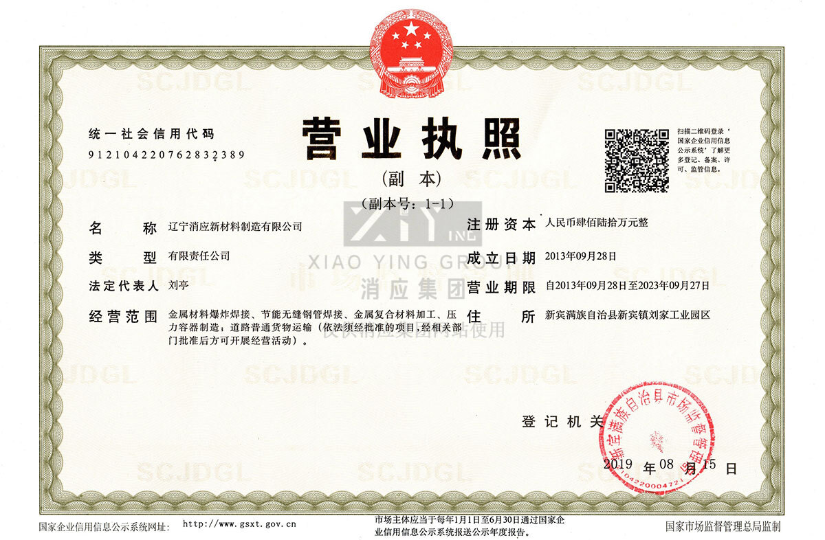 辽宁消应新材料制造有限公司营业执照