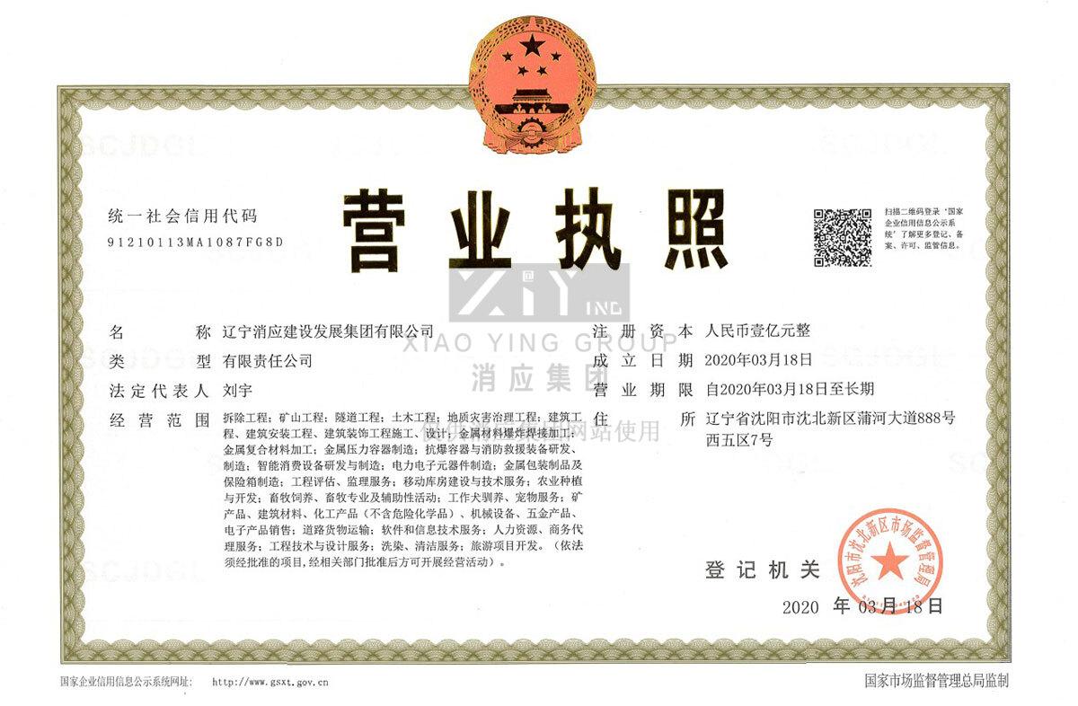 辽宁消应建设发展集团有限公司营业执照
