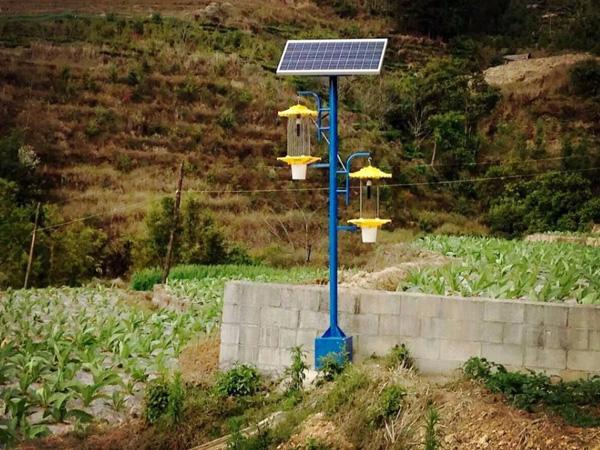 太陽能殺蟲燈價格