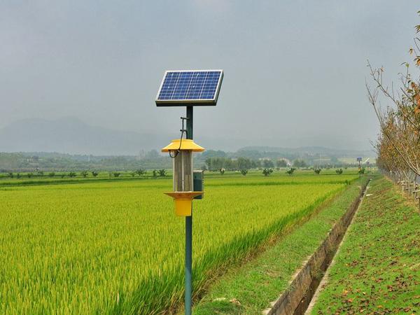 太陽能殺蟲燈9