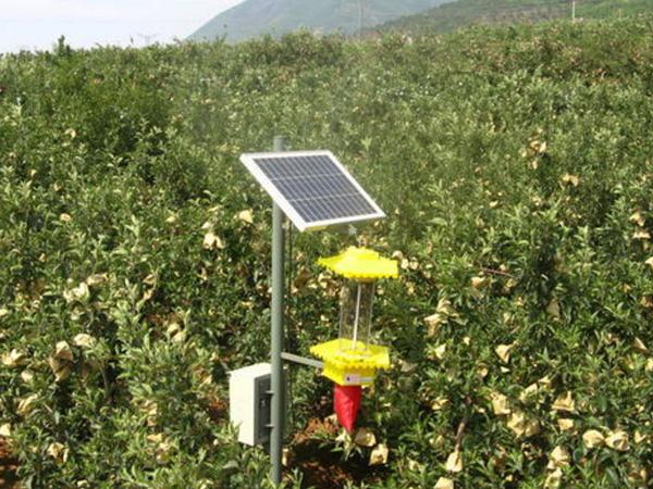 果園太陽能殺蟲燈